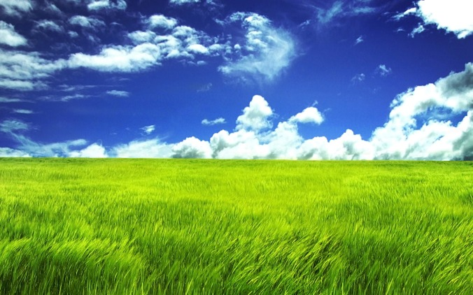 Blue-Sky-and-Green-Field-1680x1050-wide-wallpapers.net_